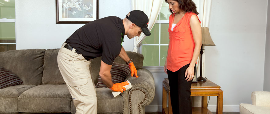 North Bethesda, MD carpet upholstery cleaning