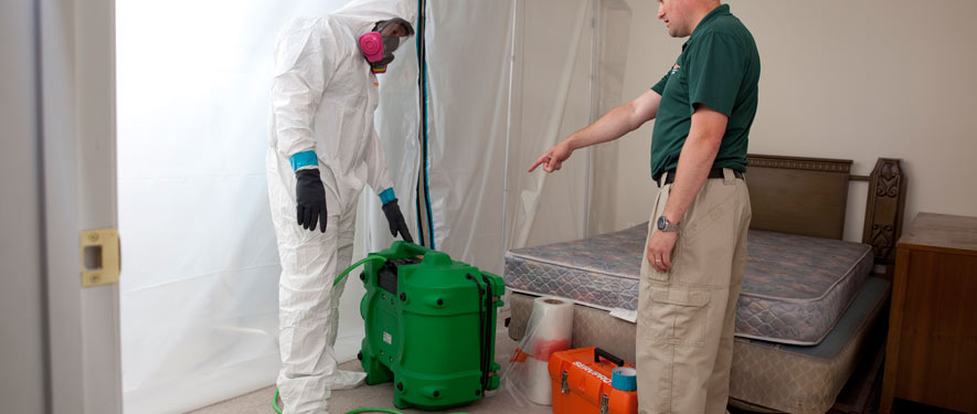 North Bethesda, MD mold removal process